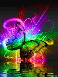 Ch 8 butterfly