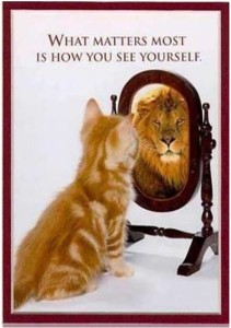 cat_is_lion_in_mirror